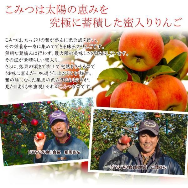 こみつ りんご リンゴ 究極の蜜入りりんご 青森県産 こみつ 6〜12玉 約2キロ ※4箱まで同一配送先に限り送料1口|tsukijiichiba|09