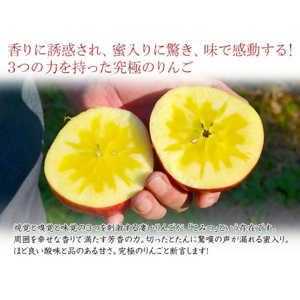 こみつ りんご リンゴ 究極の蜜入りりんご 青森県産 こみつ 6〜12玉 約2キロ ※4箱まで同一配送先に限り送料1口|tsukijiichiba|10
