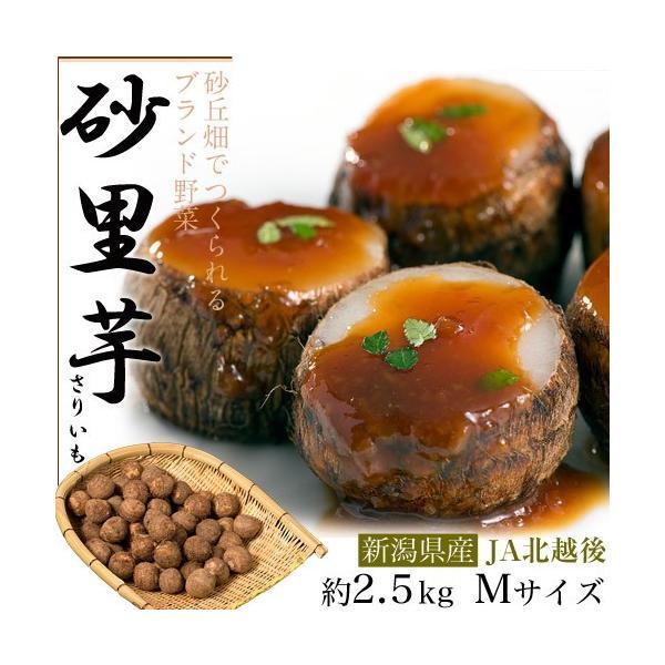 ブランド里芋 新潟県産 砂里芋(さりいも) Mサイズ 約2.5kg|tsukijiichiba