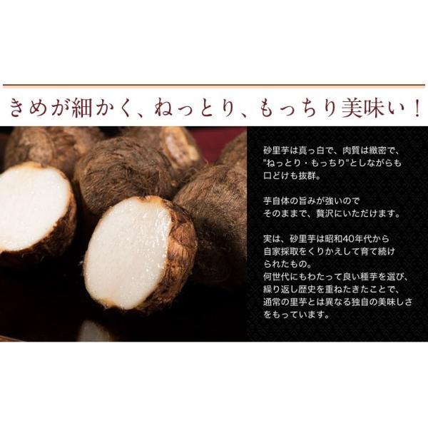 ブランド里芋 新潟県産 砂里芋(さりいも) Mサイズ 約2.5kg|tsukijiichiba|02