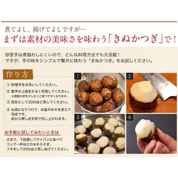 ブランド里芋 新潟県産 砂里芋(さりいも) Mサイズ 約2.5kg|tsukijiichiba|04