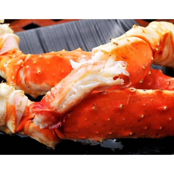 カニ タラバガニ カニしゃぶ 脚 「特大ボイルタラバ蟹」ロシア産 2肩約1.6kg(4人前相当) 冷凍・送料無料 sea ☆|tsukijiichiba|05