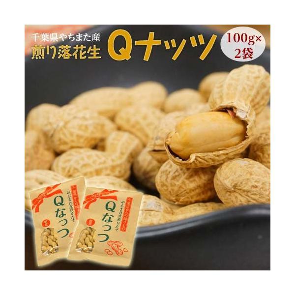 ナッツ なっつ 豆 キューナッツ きゅーなっつ 新品種 Qなっつ Qナッツ 千葉県八街産 焙煎 100g×2袋 落花生 ピーナッツ ゆうパケット 送料無料|tsukijiichiba