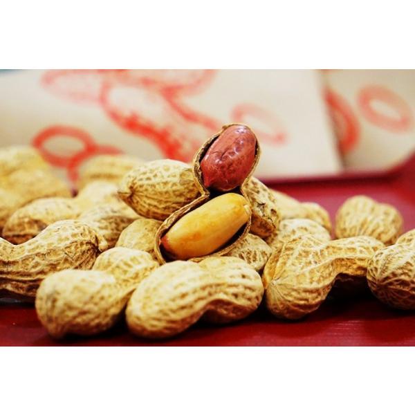 ナッツ なっつ 豆 キューナッツ きゅーなっつ 新品種 Qなっつ Qナッツ 千葉県八街産 焙煎 100g×2袋 落花生 ピーナッツ ゆうパケット 送料無料|tsukijiichiba|04