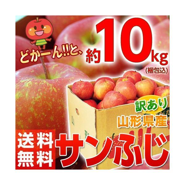 りんご リンゴ 林檎 山形産 訳あり サンふじ バラづめ 約10kg(梱包込重量) 26〜54玉 ご自宅用 送料無料|tsukijiichiba