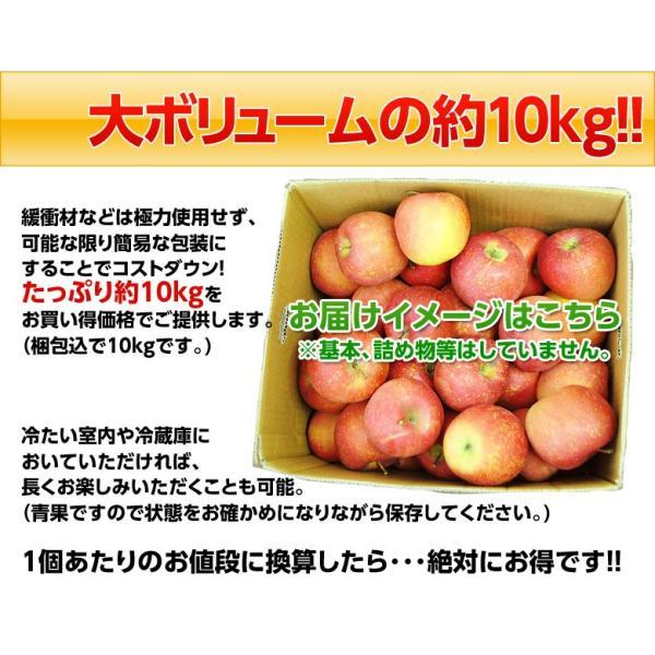 りんご リンゴ 林檎 山形産 訳あり サンふじ バラづめ 約10kg(梱包込重量) 26〜54玉 ご自宅用 送料無料|tsukijiichiba|05