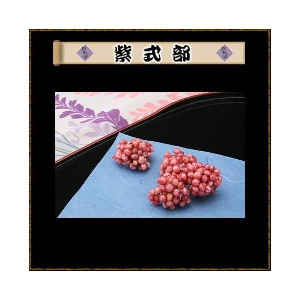 紫式部|tsukuneyamada