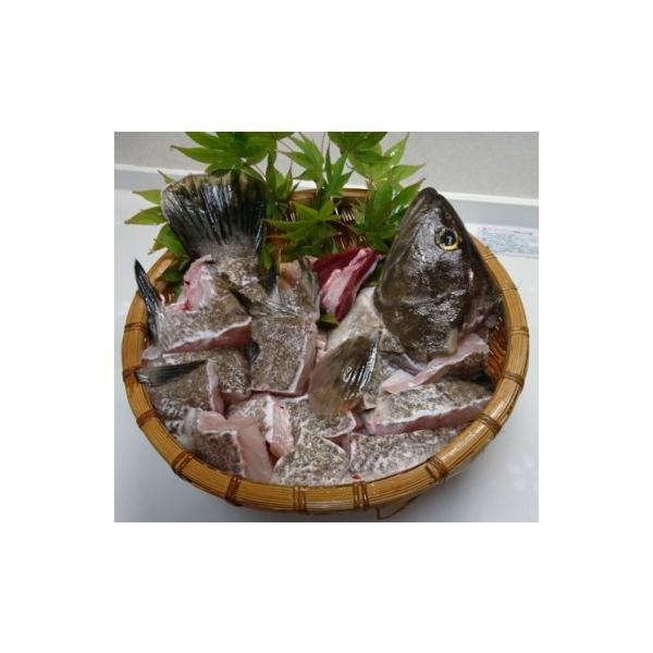 長崎県 対馬産 「幻の魚クエ」 鍋セット700g(冷凍)|tsushima-kue-store|02