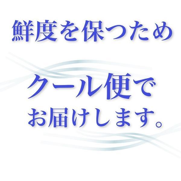【小鼓】純米大吟醸生酒 360mlx3本 tsuzumiya 03