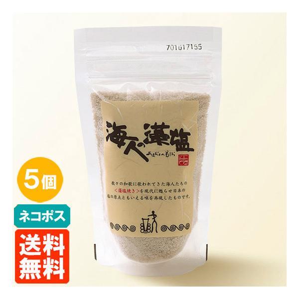 送料無料・クリックポスト・5袋セット 海人の藻塩 スタンドパック 100g×5袋 食塩 あまびとのもしお|tucano