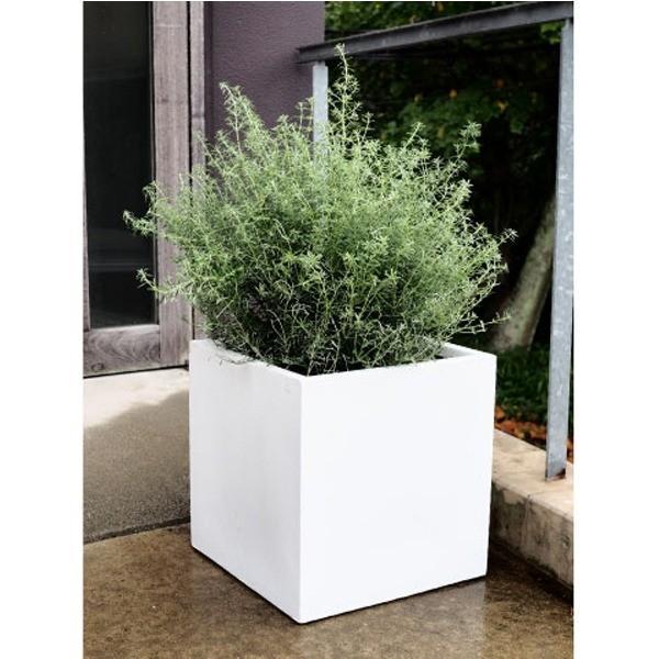 ファイバークレイ製 軽量 大型植木鉢 バスク キューブ 40cm ホワイト|tuhan-station|02