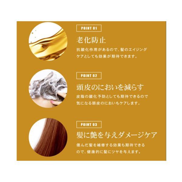 リックス DSSトリートメント 2000ml 詰替 RICS リックスアンドカンパニー サロン専売品 サロンプロ|tuyakami|02