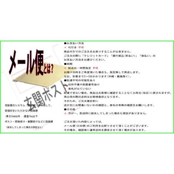 ビナ薬粧 メンズ眉墨(ブラック)(ポスト投函送料無料)男性専用 眉に限定した白髪隠し(期間限定)|tuyakami|02
