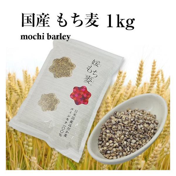 国産 もち麦 1kg 新麦 媛もち麦|tvfusion