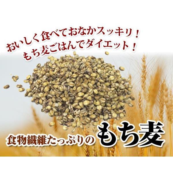 新麦!国産 もち麦 1kg tvfusion 02
