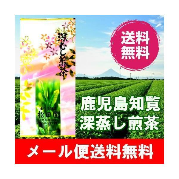 ワンコイン・メール便送料無料・鹿児島産深蒸し煎茶100g