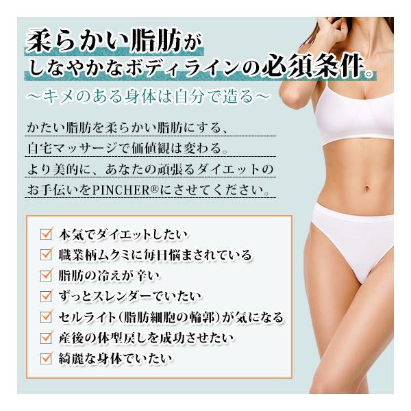 ピンシャー ボディークリーム スリミング ダイエット 脂肪溶解注射 和漢 セルライト むくみ ランキング 1位 《送料無料》  PINCHER body cream 380ml|twentycompany|03