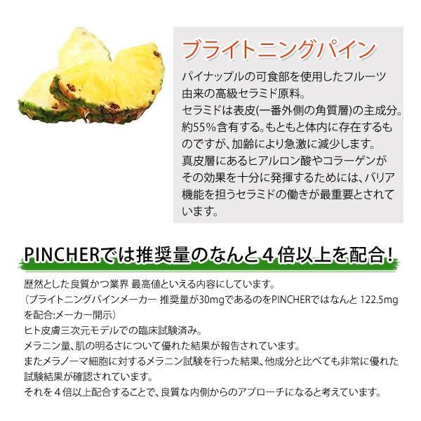 ピンシャー  メラニン 紫外線対策 美白 UV対策 シミ ソバカス 日焼け止め  《送料無料》 PINCHER SUV Quartet Supplement|twentycompany|04