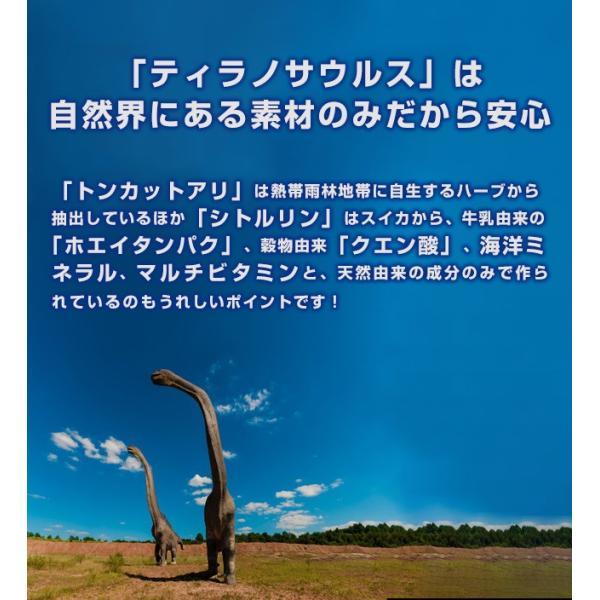 ティラノサウルス(1箱3本入) tyrannosaurus 05