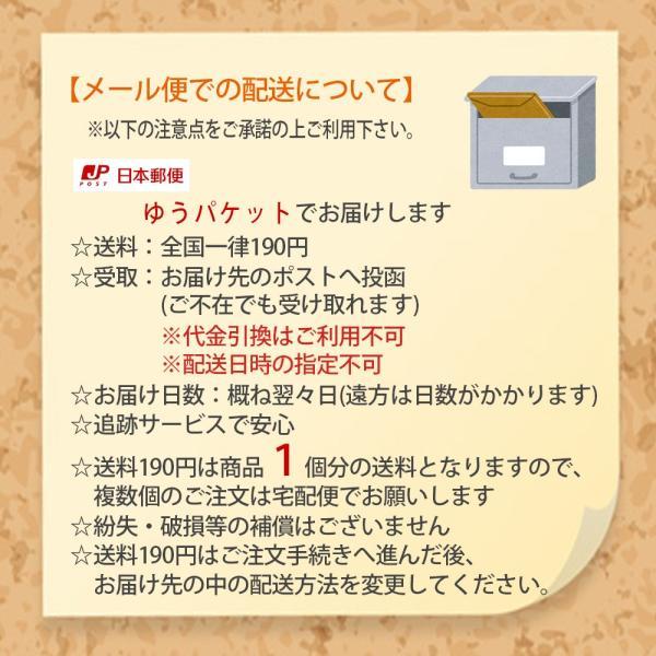玄関 用 カーテン 1枚まで メール便対応 ( のれん タイプ 1枚) 約巾100×高200cm 調節可能 マジックテープ付き|uedakaya|07