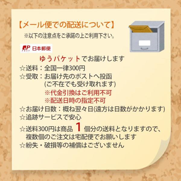 メール便 対応可 レース障子 昼も夜も見えにくいタイプ 約98×200cm 2枚組 障子 張替え 破れない障子 レース生地 障子紙の代わり uedakaya 07