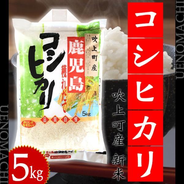 鹿児島 吹上町産 新米 コシヒカリ 5kg