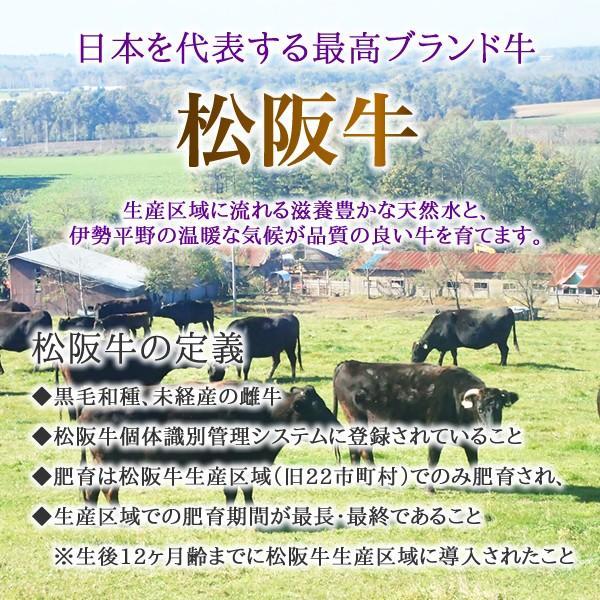 松阪牛100%ハンバーグ用味付けミンチ<100g×2> 松阪牛 黒毛和牛 雌牛 ミンチ 三重県 ブランド牛 ハンバーグ|ueshokufood|02