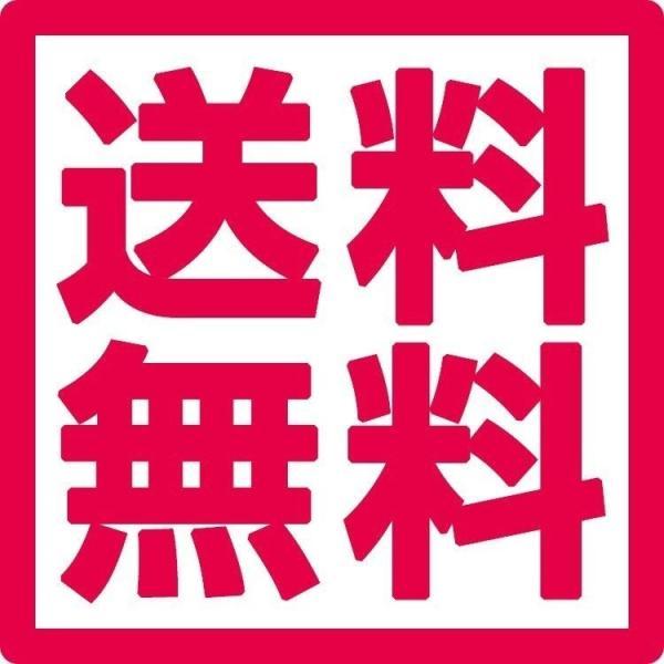 20%OFF 送料無料 プロテインバー UHA味覚糖 SIXPACK シックスパック キャラメルピーナッツ味 10個セット 低糖質|uha-mikakuto|02