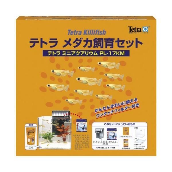 ミニアクアリウムPL17KFメダカセット スペクトラム ブランズ ジャパン (株) 【送料無料】|ulmax|02
