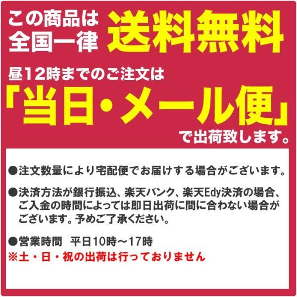 デジタルカメラケース ピンク ブルー グレー  伸縮素材 |ulmax|05