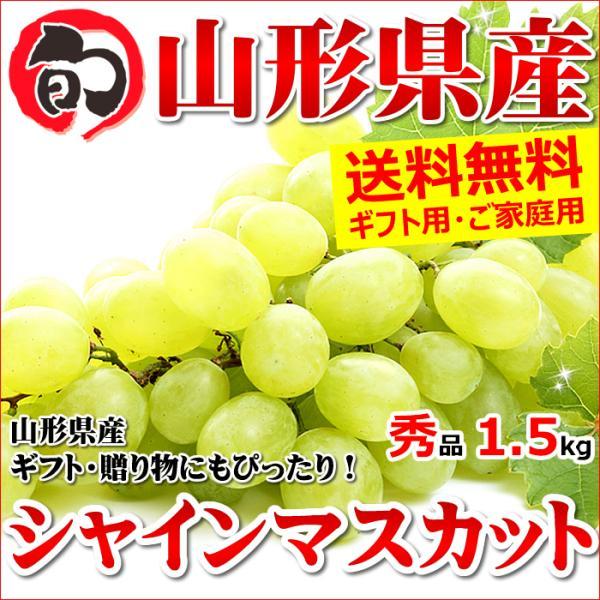 【あすつく対応/出荷中】山形県産 ブドウ シャインマスカット 1.5kg(秀品/2房〜3房)