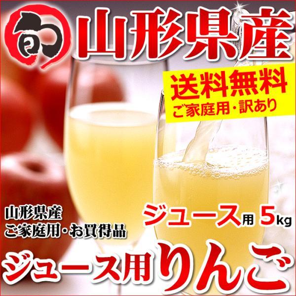 【出荷中】訳あり りんご サンふじ 5kg (ご家庭用/15玉〜25玉入り/ジュース・スムージー用)