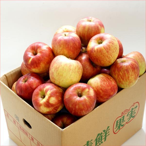 訳あり サンふじ りんご ご家庭用 10kg 生食可 山形県産 リンゴ 人気 果物 フルーツ あすつく 送料無料 お取り寄せ|ultra-taste|03