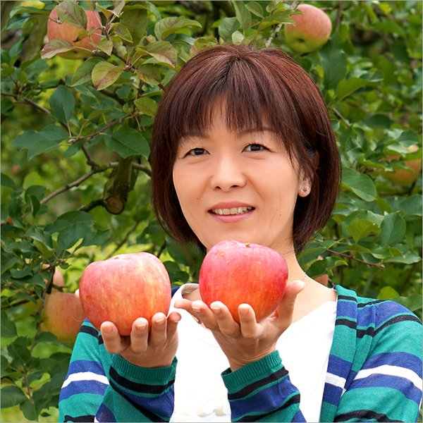 訳あり サンふじ りんご ご家庭用 10kg 生食可 山形県産 リンゴ 人気 果物 フルーツ あすつく 送料無料 お取り寄せ|ultra-taste|04