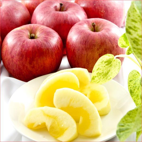 訳あり りんご サンふじ リンゴ ご家庭用 5kg 生食可 山形県産 果物 フルーツ 産地直送 あすつく 山形県 送料無料 お取り寄せ|ultra-taste|02