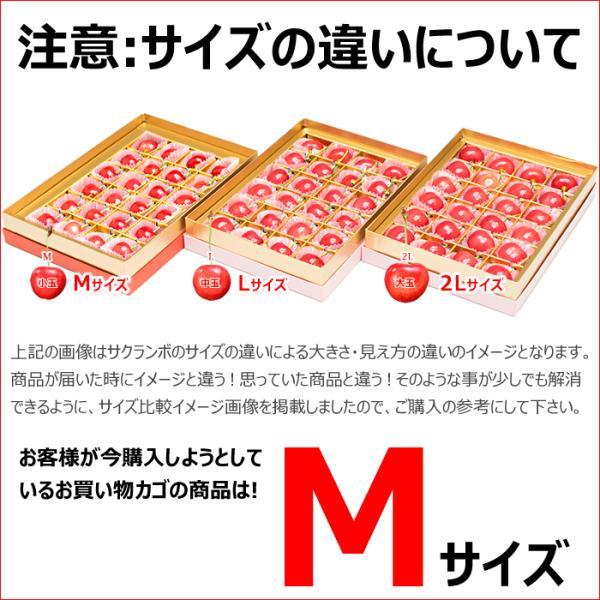 山形県産 さくらんぼ 佐藤錦 (秀品 Mサイズ 24粒入り) フルーツ ギフト 贈り物 お取り寄せ|ultra-taste|06