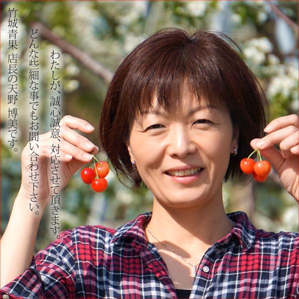 山形県産 さくらんぼ 佐藤錦 (秀品 2Lサイズ 24粒入り) フルーツ ギフト 贈り物 お取り寄せ|ultra-taste|05