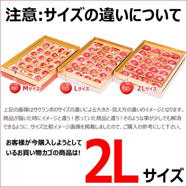 山形県産 さくらんぼ 佐藤錦 (秀品 2Lサイズ 24粒入り) フルーツ ギフト 贈り物 お取り寄せ|ultra-taste|06