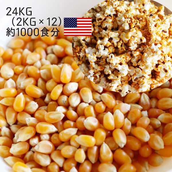 ポップコーン用専用豆24kg 2kg×12袋(爆裂種) 乾燥とうもろこし 1000食分 バタフライタイプ'(メーカー直送)