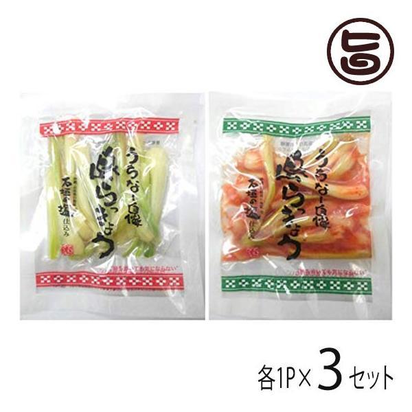 沖縄県産 島らっきょう 塩漬け キムチ 各50g 各1P×3セット でいごフーズ おすすめ イチオシ おつまみ 送料無料