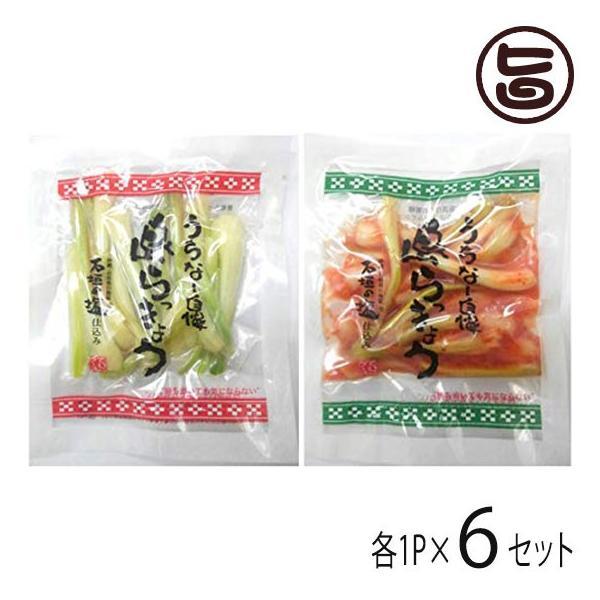 沖縄県産 島らっきょう 塩漬け キムチ 各50g 各1P×6セット でいごフーズ おすすめ イチオシ おつまみ 送料無料