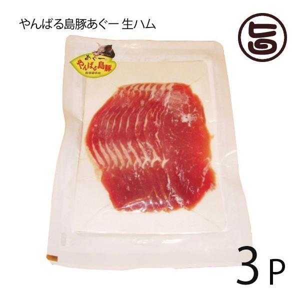 やんばる島豚あぐー 黒豚 生ハム 100g×3P フレッシュミートがなは フレッシュミートがなは 沖縄 土産 アグー あぐー 貴重  条件付き送料無料