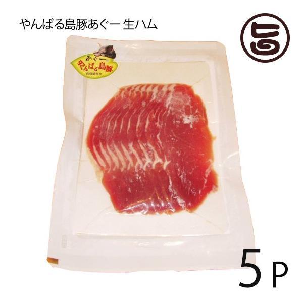 やんばる島豚あぐー 黒豚 生ハム 100g×5P フレッシュミートがなは フレッシュミートがなは 沖縄 土産 アグー あぐー 貴重  条件付き送料無料