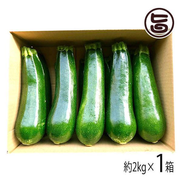鹿児島産 甘塩ズッキーニ 箱込み 2kg ファミリー農美家 採れたて新鮮な畑産地直送便 お取り寄せ 野菜 条件付き送料無料