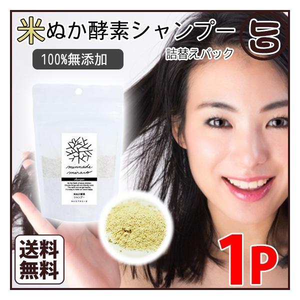 米ぬか酵素シャンプー 詰替用 105g みんなでみらいを 送料無料 無添加 オーガニック 酵素|umaimon-hunter
