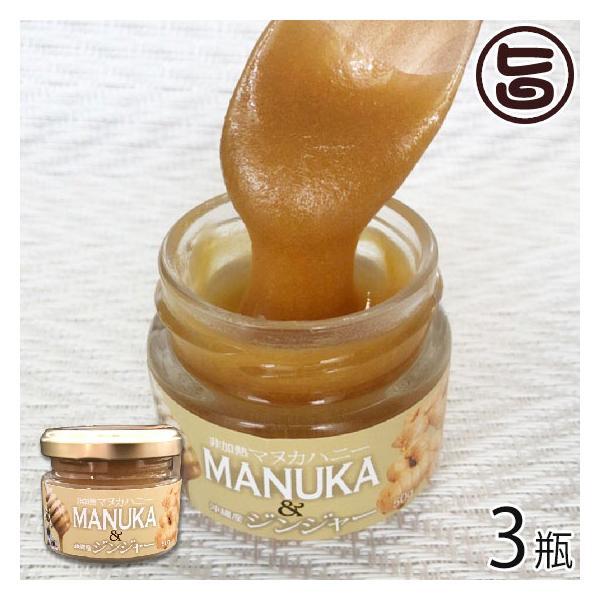 マヌカハニー&ジンジャー 50g×3瓶 ハニーフュージョン 沖縄 人気 土産 蜂蜜 スイーツ 条件付き送料無料