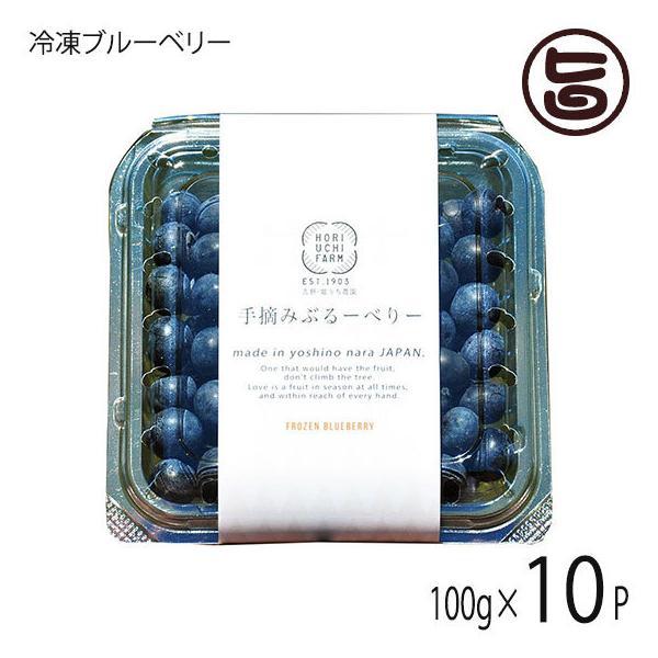 冷凍ブルーベリー100g×10P 堀うち農園 無農薬栽培 安心 安全 条件付き送料無料