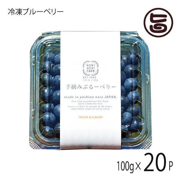 冷凍ブルーベリー100g×20P 堀うち農園 無農薬栽培 安心 安全 条件付き送料無料