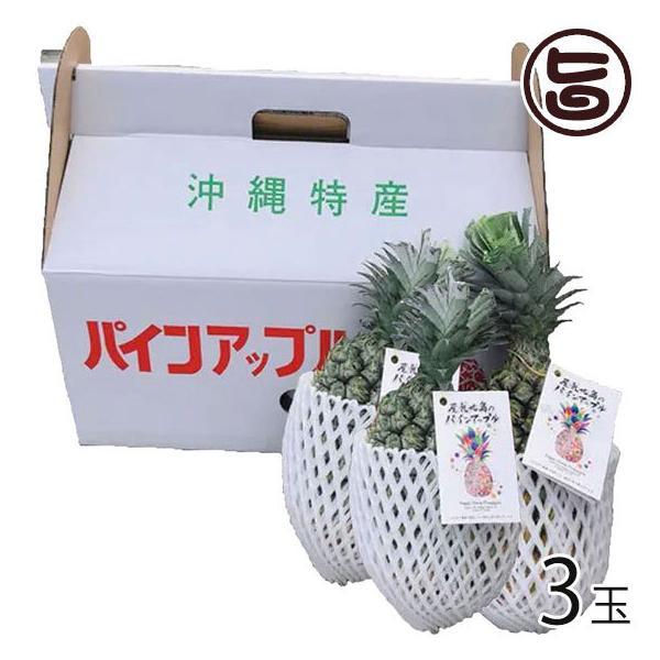 屋我地島の完熟スナックパイン 3玉 2.4kg以上 イリ玉城農園 沖縄県産 パイナップル ボゴール種 トロピカルフルーツ 農薬節約栽培 送料無料