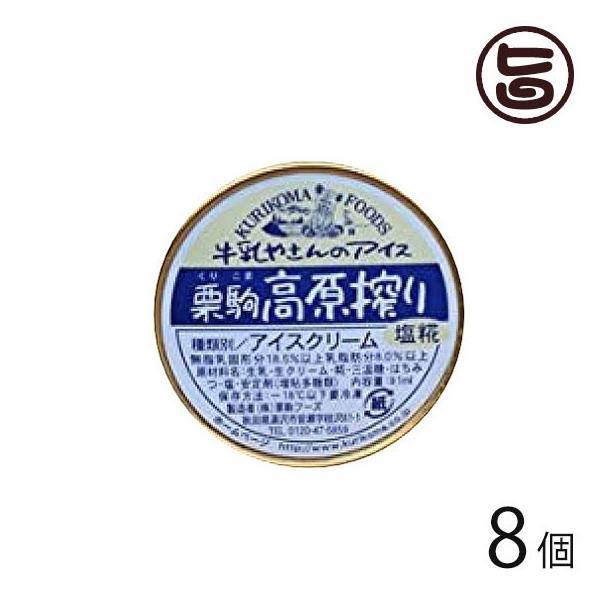 塩糀アイス 8個 栗駒フーズ 秋田県 人気 贈り物 極上手作りアイス 牛乳屋さんのアイスクリーム ご当地アイス 冬アイス 送料無料